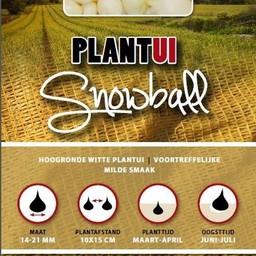 Plantui Snowball 250 Gram