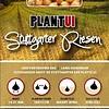 Plantui Stuttgarter Riesen 250 Gram