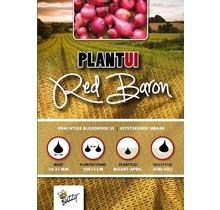 250 gram Plantuien Red Baron