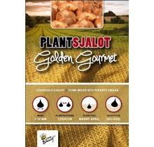 250 gram Plant sjalotten Golden Gourmet