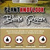 Plantknoflook Blanke Reuzen 250 Gram
