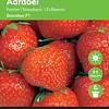 Moestuinplant Aardbeien