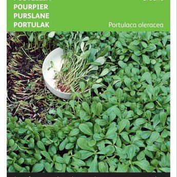 Moestuinplant Groene postelein groentezaden