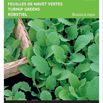 Moestuinplant Groene raapstelen groentezaden
