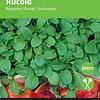 Moestuinplant Rucola