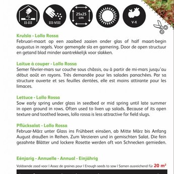 Moestuinplant Krulsla Lollo Rossa groentezaden