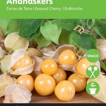 Ananaskers zaden