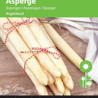Asperge Argenteuil