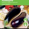 Moestuinplant Aubergine