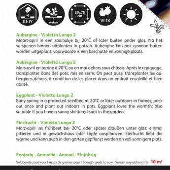 Moestuinplant  Aubergine Violetta Lunga 2