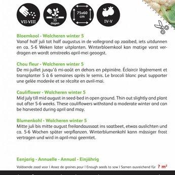 Moestuinplant Bloemkool Walcheren Winter 5 zaden