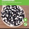 Stambonen Yin Yang