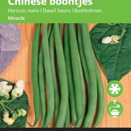 Moestuinplant Chinese Boontjes