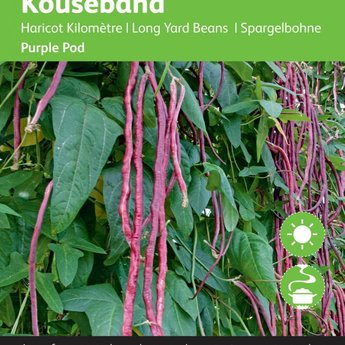 Moestuinplant Kouseband paars zaden
