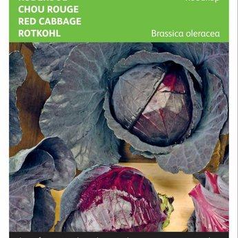 Moestuinplant Rode kool Roodkop zaden