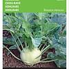Moestuinplant Koolrabi Lanro