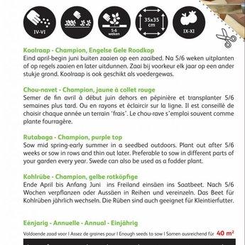 Moestuinplant Koolraap Champion, Engelse Gele Roodkop