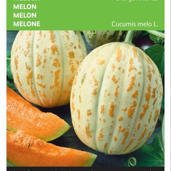 Moestuinplant  Meloen Oranje Ananas zaden