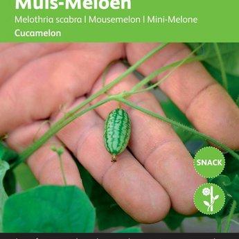 Moestuinplant Muis meloen Cucamelon zaden