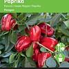 Moestuinplant Paprika Snack Paragon