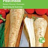 Moestuinplant Pastinaak