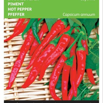 Moestuinplant Spaanse Peper Cayenne,  zaden