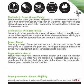 Moestuinplant Bladselderij Pascal, Groene Volpijp zaden