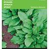 Moestuinplant Spinazie Winterreus