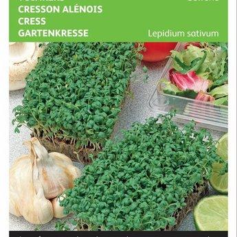 Moestuinplant Tuinkers Gewone zaden