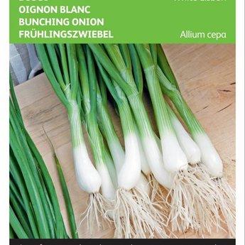 Moestuinplant Bosui White Lisbon zaden