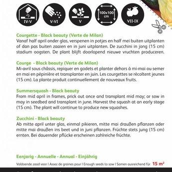 Moestuinplant Courgette Black Beauty - Verte De Milan zaden