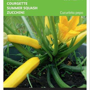 Moestuinplant Courgette Gold Rush F1 zaden