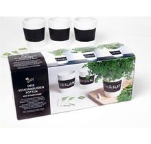 Kruiden Set drie witte krijt potten