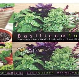 Zinken Teiltje Basilicum Tuin