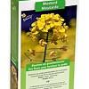 Moestuinplant Groenbemester Gele Mosterd 140 Gram