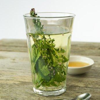 Moestuinplant mixpakket theekruiden. Munt, Stevia en Citroenmellise