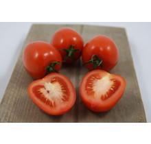 Geënte Pruim tomaten planten
