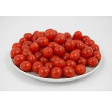Geënte Tomberry tomaten planten