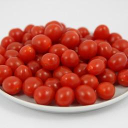 Moestuinplant geënte tomberry tomaten (9 planten)