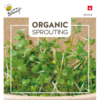 Moestuinplant Organic Sprouting Broccolikers (BIO)