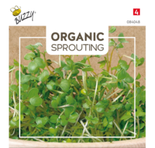 Sprouting Broccolikers