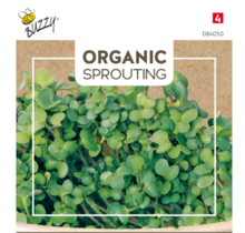 Sprouting Mosterdkers