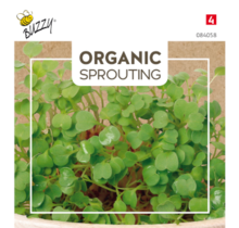 Organic Sprouting Rucolakers (BIO)