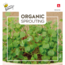 Moestuinplant Sprouting Rucolakers