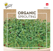 Sprouting Tuinkers