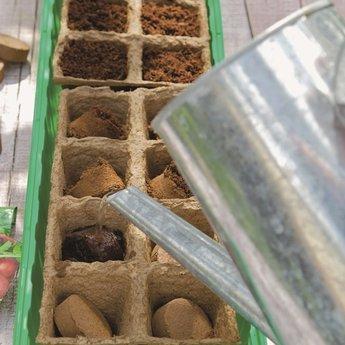 Moestuinplant Garden@Home Cocopress aardetablet 3cm