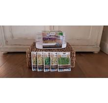 Cadeau pakket kiemgroente ''sprouting''