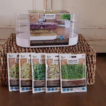 Moestuinplant Cadeau pakket kiemgroente ''sprouting''