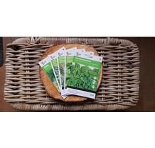 Cadeau pakket moestuinplant ''kruiden''