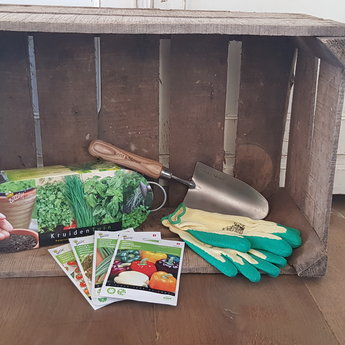 Moestuinplant Cadeau pakket moestuinplant Ready ToGo